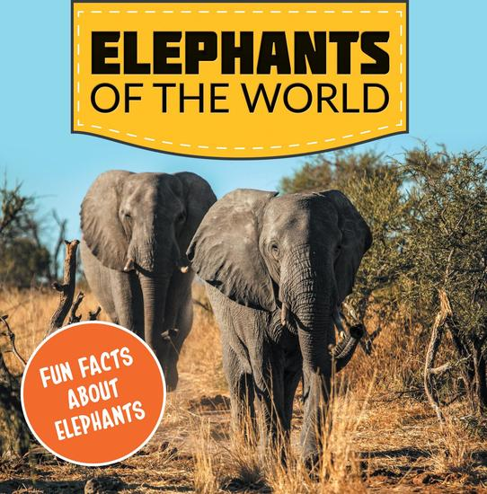 elephants of the world fun facts about elephants